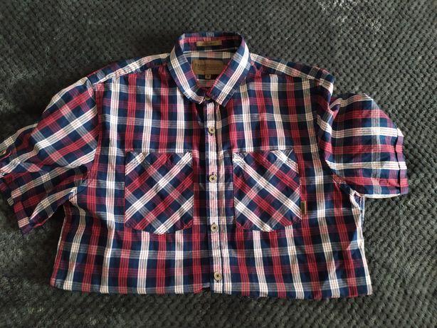 Koszula Cropp M
