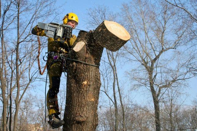 Зрізання дерев у важко доступних місцях
