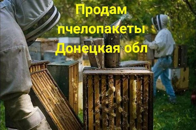 Продам пчелопакеты Донецкая область