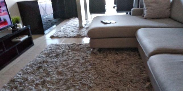 2 carpetes  por 250€