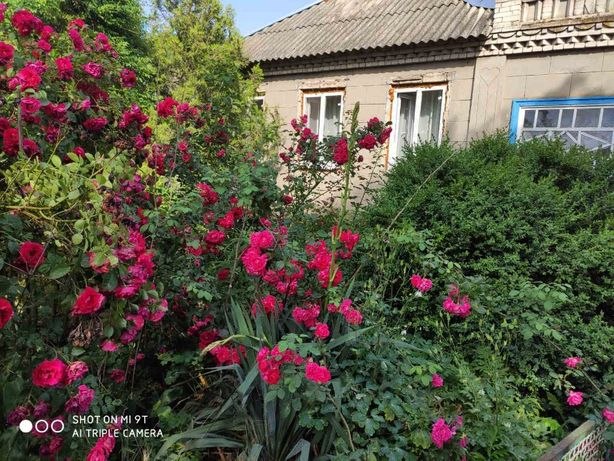 СРОЧНО!!! Продам дом в пгт НОВОНИКОЛАЕВКА (Верхнедн-ский р-йон) ТОРГ