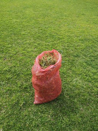 Vende-se Sacos De Relva Brasileira Perfeita Para Jardins 30€ Cada
