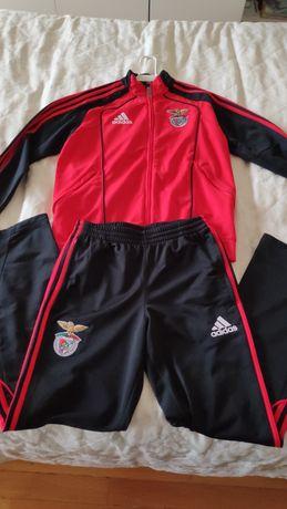 Fato de treino adidas original Benfica