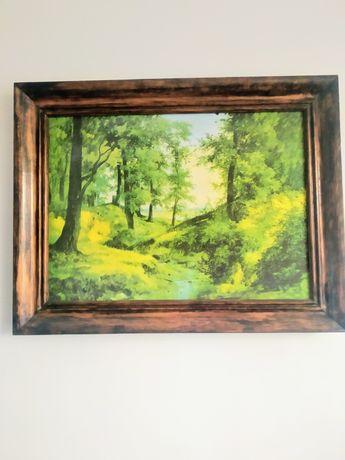 Obraz w ramce, las