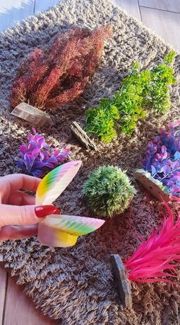 Roślinki do akwarium rośliny kolorowe akwariowe dla rybek