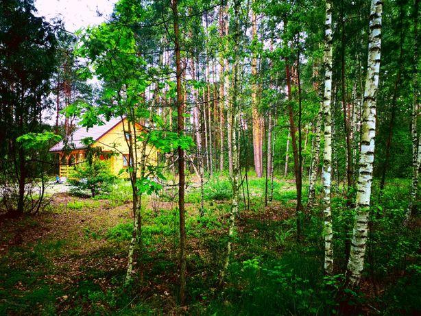 Piękny Domek w lesie ! Nocleg Zalew Biszcza Żary Tanew Roztocze Kajaki