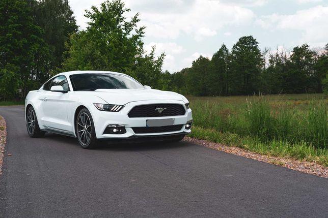 Ford Mustang biały wynajem ślub wesele sesje studniówka urodziny
