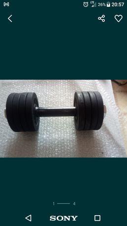 Hantle żeliwne 2 x12 kg fi 30 nowe