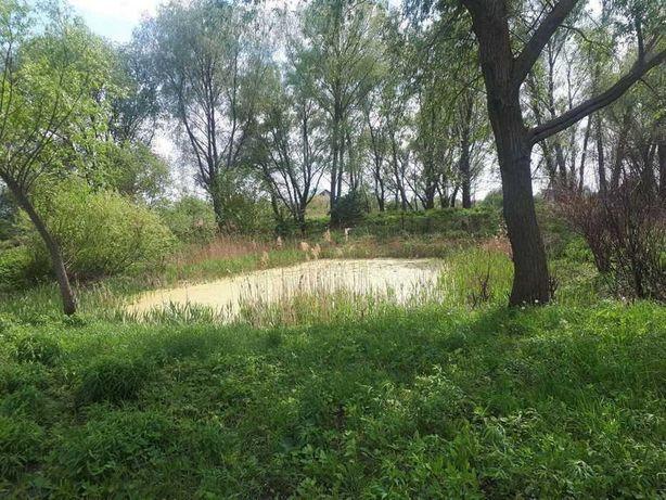 Продажа земельного учаска под застройку в с.Коржи 60 км от Киева
