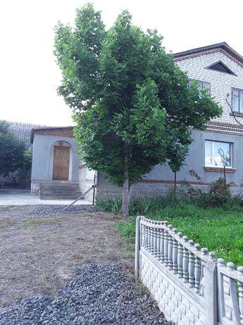 Продається будинок в селі Давидківцях