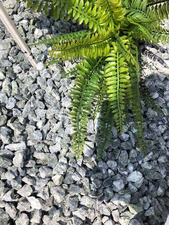 Grys zielony, kamień ogrodowy, kora, Namysłów
