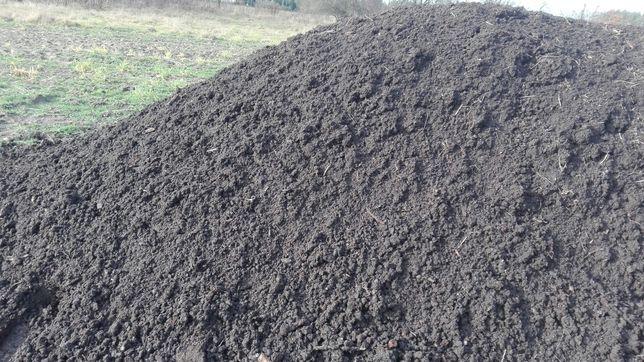 Czarnoziem ziemia ogrodowa humus ziemia polna