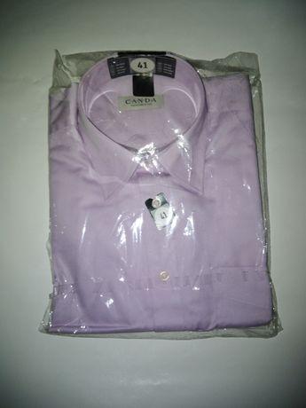 Camisa de homem nova. OFERTA DIA DO PAI