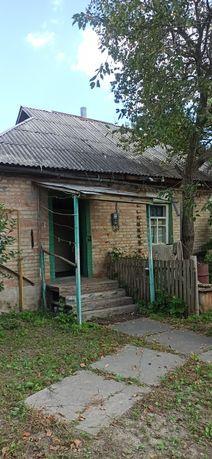 Дом и участок 31 сотка Рожевка (Зазимье, Пуховка), 22км от Киева