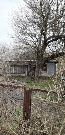 Сдам/продам дом с огородом