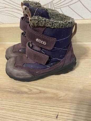Зимние ботиночки Ecco 26р с gore-tex