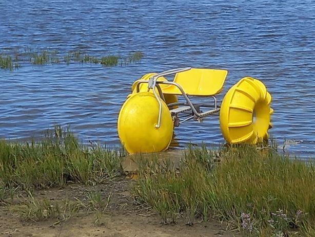 Gaivota pedais bicicleta água
