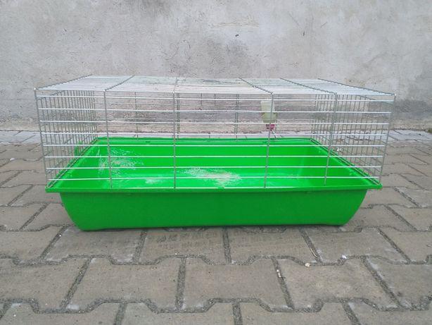Klatka dla świnki morskiej, królika