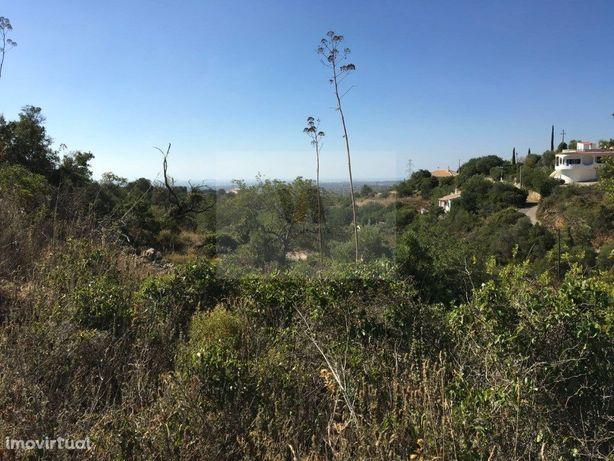 Terreno rústico situado a 14km de Faro