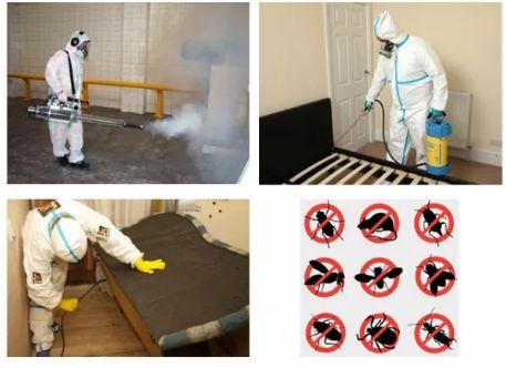Уничтожение тараканов, блох, клопов,дезинфекция помещений.