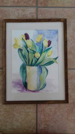 "Akwarela ,,Tulipany"" ."