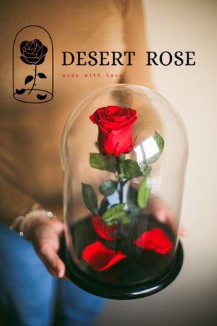 Подарок/роза/роза в колбе PREMIUM/цветы/рози/квіти