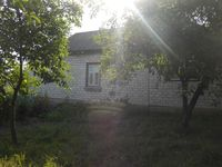 Уютный дом с. Слабин