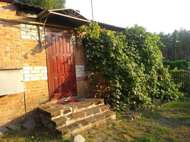 Продам квартиру в одноэтажном доме с отдельным входом птг Гуты