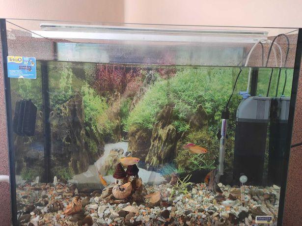 Продам акваріум 180 літрів.