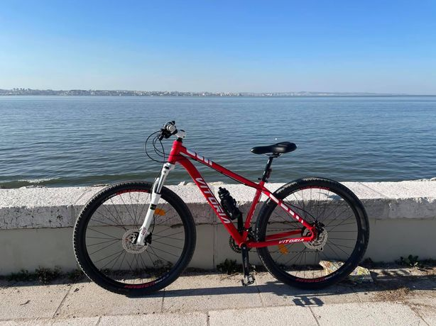 Bicicleta btt 29