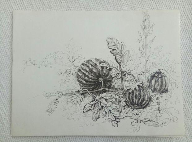 Рисунки черно-белые скетч