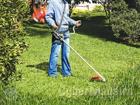 Limpeza de terrenos/garagens