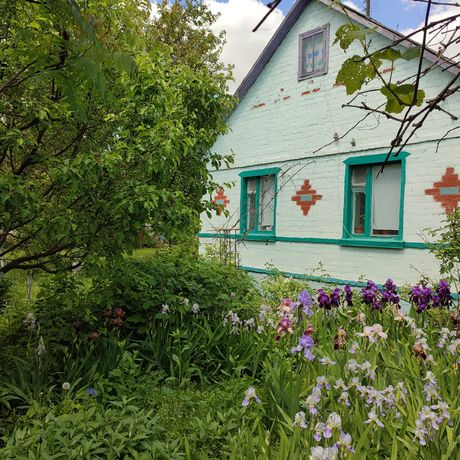 Продам дом село Рудницкое