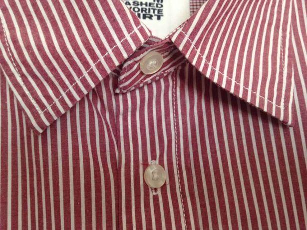 Camisa de homem M 100% algodão