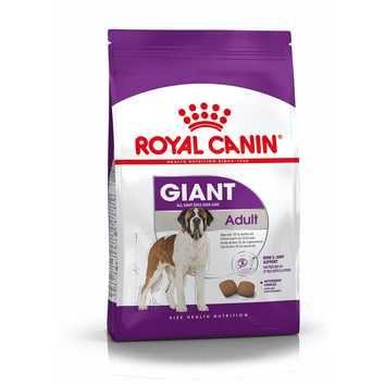 Royal Canin Giant Adult 15kg + 5kg - PORTES GRÁTIS