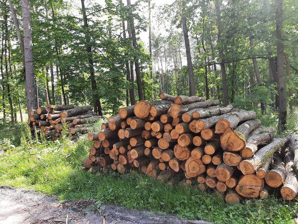 Drewno drzewo opałowe Sosna Dąb Brzoza Buk  opał