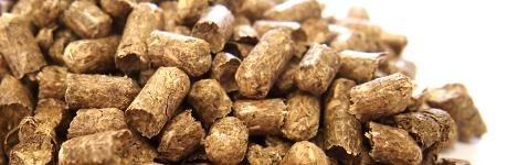 Ściółka dla zwierząt hodowlanych - granulat, pellet ze słomy