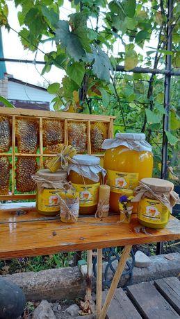 Мед соняшниковий, натуральний мед