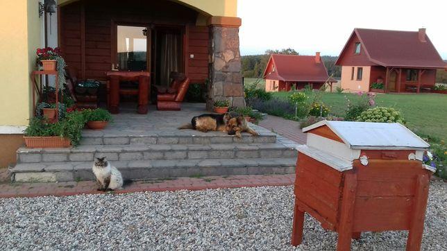 Dom na wsi, wypoczynek na wsi, domek nad jeziorem, Mazury Warmia