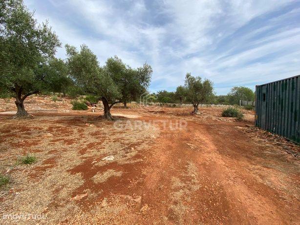 Terreno rústico com 2830m2, Alte, Algarve