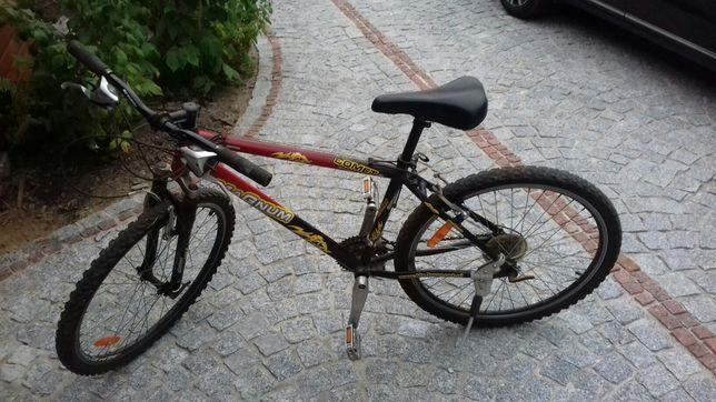 Magnum rower