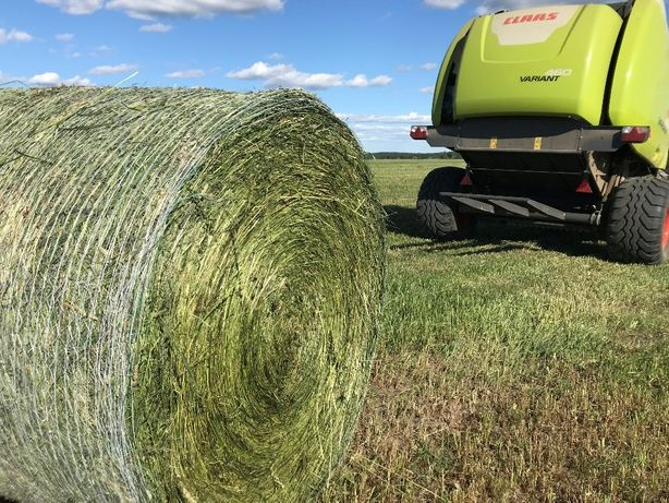 Sianokiszonka BELE trawy DSV koniczyna LUCERNA siano JAKOŚĆ dowozimy