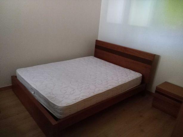 Apartamento T3 Covilhã Quarto arrendar rapariga.