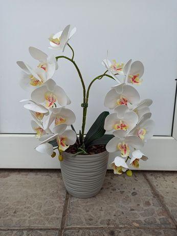 Латексна орхідейка