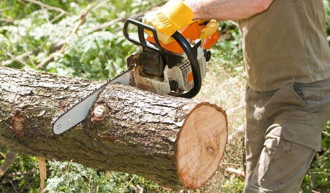 Валка деревьев и пиляние дров