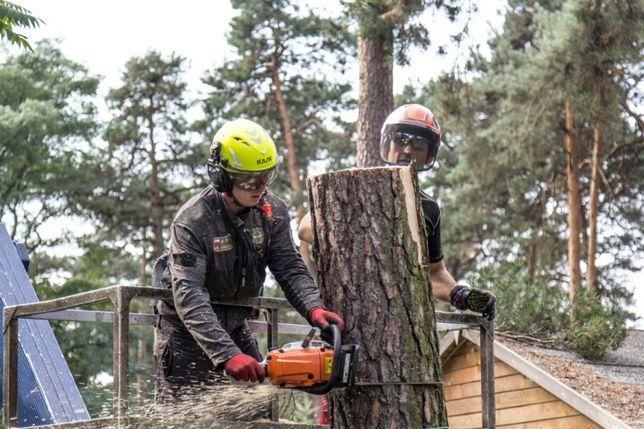 Wycinka drzew - czyszczenie działek pod inwestycje - frezowanie karp