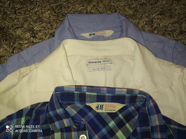 Zestaw koszul 116
