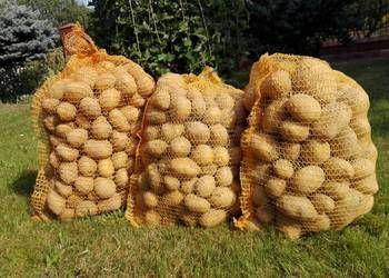 Ziemniaki 8 zł worek - od 5 woreczków dowóz gratis.