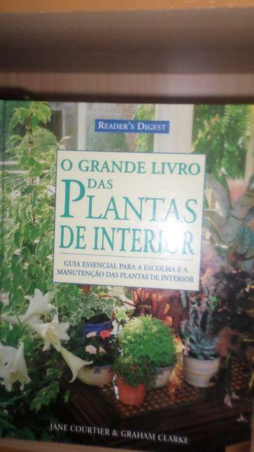 O grande livro das plantas de interior