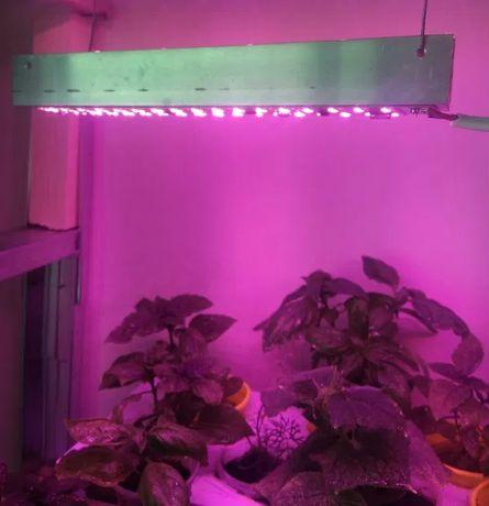 Лампа лэд фитоспектр для растений
